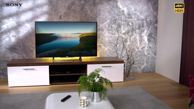 sony bravia 55xd8005 televizor smart 139 cm 55xd8005 4k. Black Bedroom Furniture Sets. Home Design Ideas
